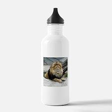 Lion_2014_1001 Water Bottle