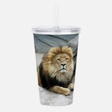 Lion_2014_1001 Acrylic Double-wall Tumbler