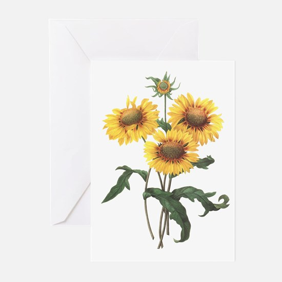 Redoute Sunflowers Greeting Cards (6)