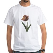 Redoute Parrot Tulip Shirt