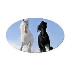 Beautiful Horses Oval Car Magnet