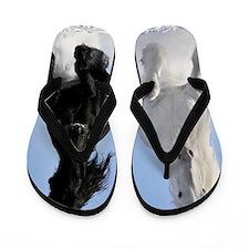 Beautiful Horses Flip Flops