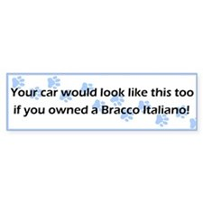 Your Car Bracco Italiano Bumper Bumper Sticker