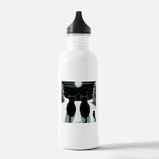 Cat 429 Water Bottle