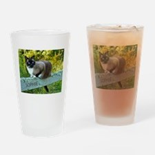 Snowshoe cat Sophie May 2013 Drinking Glass