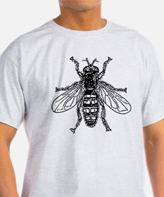 Buzz Buzz The Fly - Antique Illustration T-Shirt