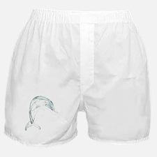 Blue Dolphin Boxer Shorts