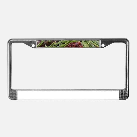 Pine Cone License Plate Frame