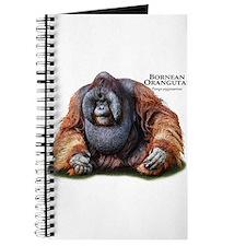 Bornean Orangutan Journal