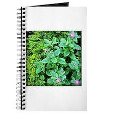 Purple Flowers Journal