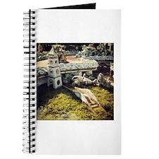 Pond Journal
