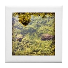 Turtle Pond Tile Coaster