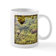 Turtle Pond Mugs