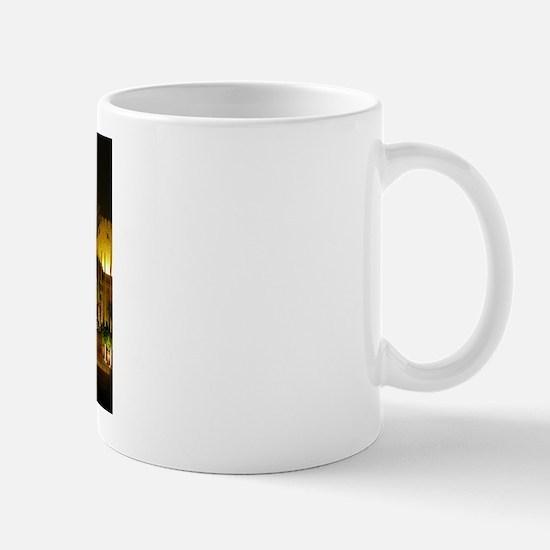 DSCN2193 Mugs