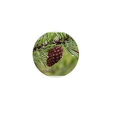 Pine Cone Mini Button