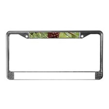 Pine Cone License Plate Frame