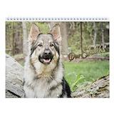 Shiloh shepherd boutique Wall Calendars