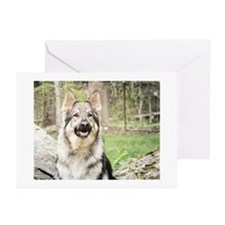 2015 OurShilohs Greeting Cards (Pk of 10)