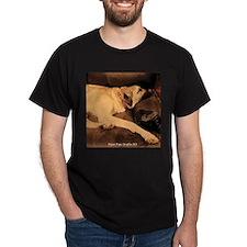 Anatolian, Couch Potato T-Shirt