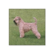"Cute Soft coated wheaten terriers Square Sticker 3"" x 3"""