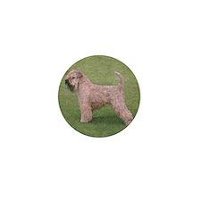 Cool Irish terrier Mini Button (10 pack)