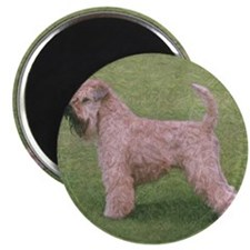 Unique Irish terrier Magnet