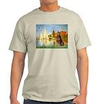 Regatta / Red Doberman Light T-Shirt