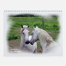 Lipizzan Impressions 12 Month Wall Calendar