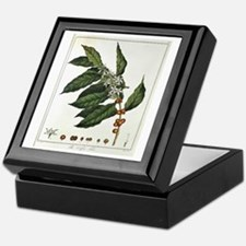 Coffee Botanical Print Keepsake Box