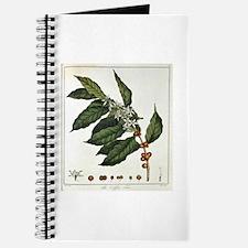 Coffee Botanical Print Journal