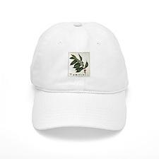 Coffee Botanical Print Cap
