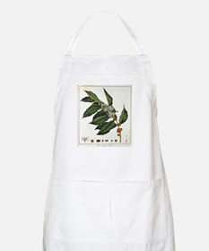 Coffee Botanical Print BBQ Apron