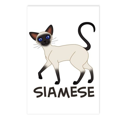 Seal Point Siamese Postcards (Package of 8)