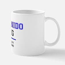 Bienvenidos Mug