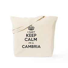 Unique Cambria Tote Bag