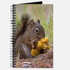 Happy Squirrel & Prized Mushroom Journal