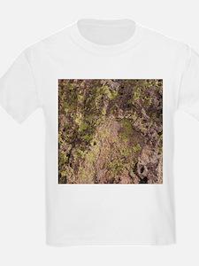 Lichen and Rock T-Shirt