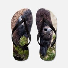 Christmas Bison Flip Flops