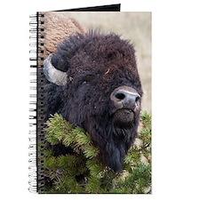 Christmas Bison Journal