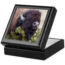 Christmas Bison Keepsake Box