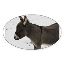 Miniature Donkey III Decal