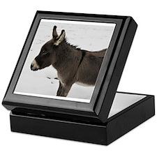 Miniature Donkey III Keepsake Box