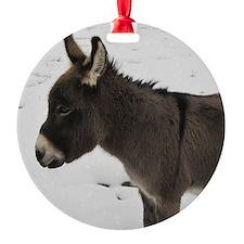 Miniature Donkey III Ornament