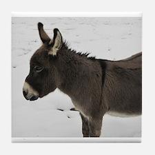 Miniature Donkey III Tile Coaster