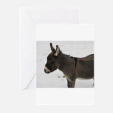 Miniature Donkey III Greeting Cards