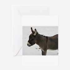 Miniature Donkey III Greeting Cards