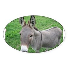 Miniature Donkey Decal
