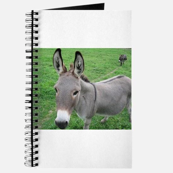 Miniature Donkey Journal
