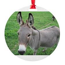 Miniature Donkey Ornament