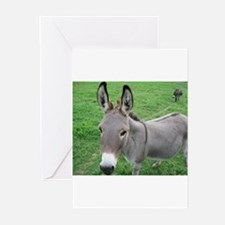 Miniature Donkey Greeting Cards